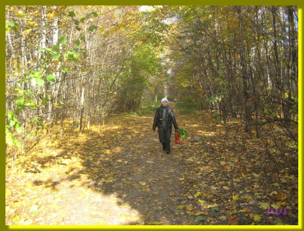 Усадьба Кусково - гуляем по осеннему парку