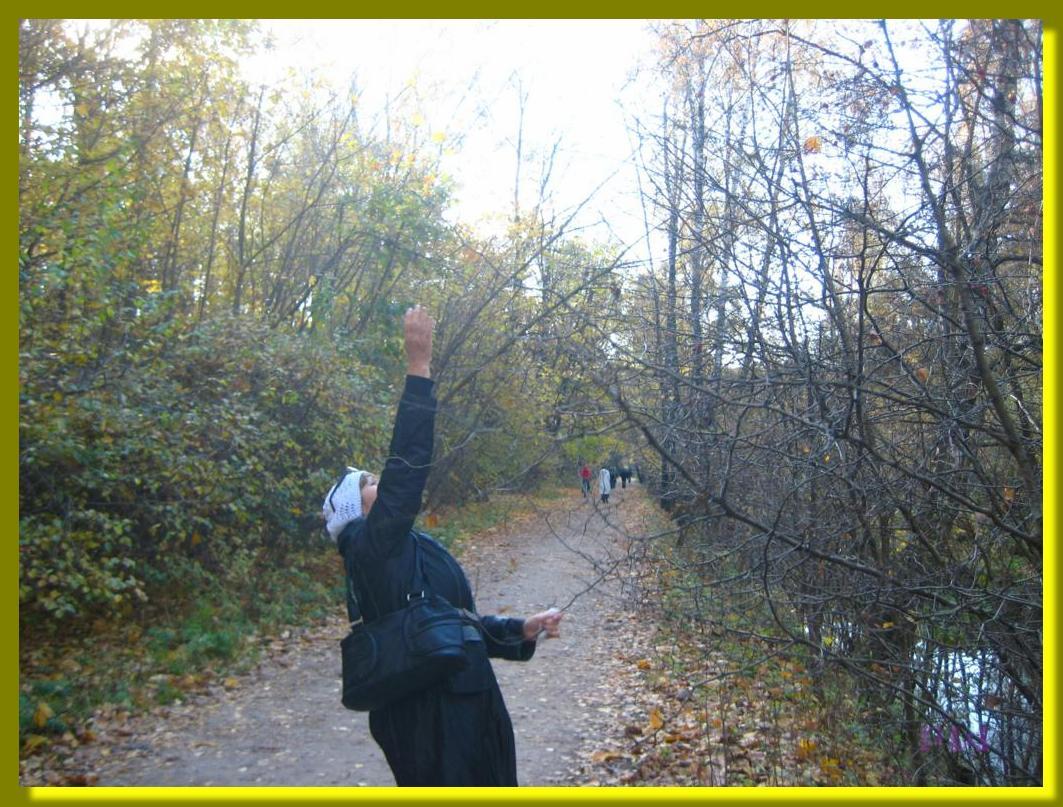 Усадьба Кусково - прогулка по парку