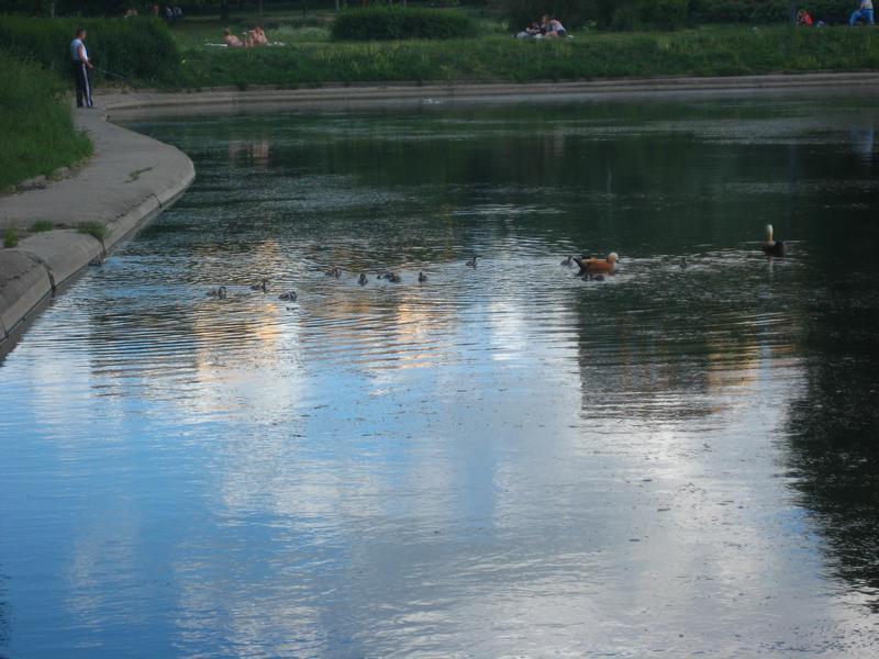 02.Park-Druzhbyi-v-Moskve