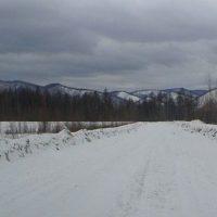 Совершенствование российского законодательства о сельскохозяйственных потребительских кооперативах