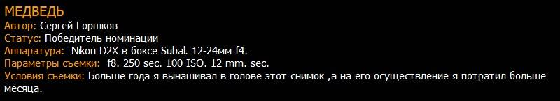 Сергей Горшков победитель номинации