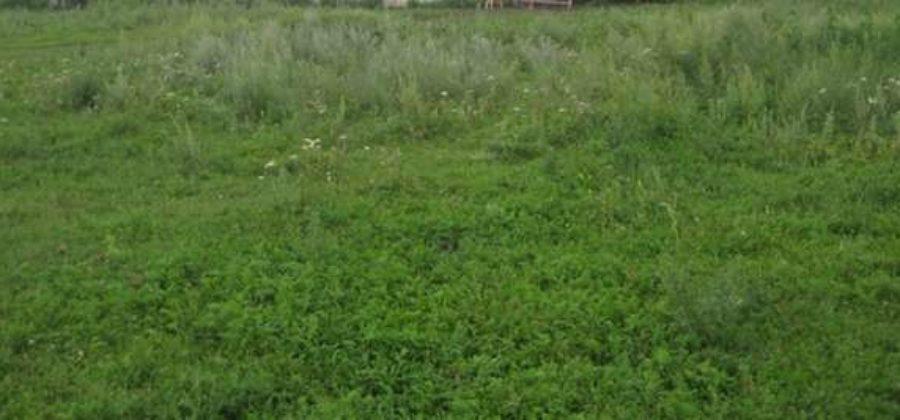 Сельские кооперативы и ФЗ «О сельскохозяйственной кооперации»