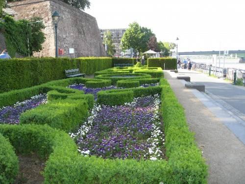 Просто красиво и уютно на берегу Рейна