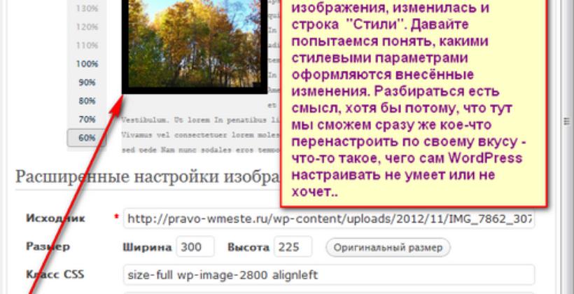 Как редактировать параметры картинки на вэб-странице сайта