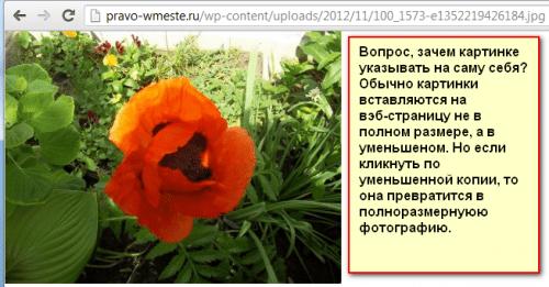 Kartinki-v-WordPress-05.png