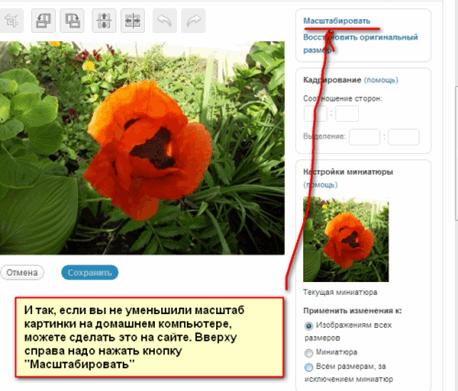 Masshtabirovat-v-graficheskom-redaktore