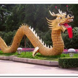 О кооперативах Китая