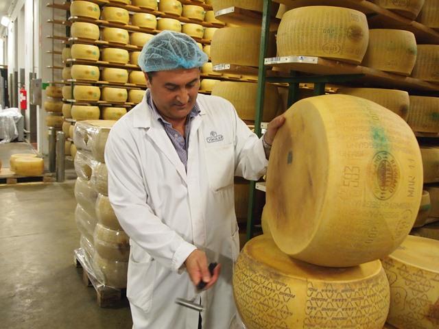 Производство сыра в кооперативе
