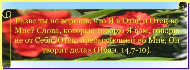 Доброе семя 13
