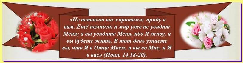 Доброе семя-страница христианина на сайте pravo-wmeste.ru Не оставлю Вас сиротами