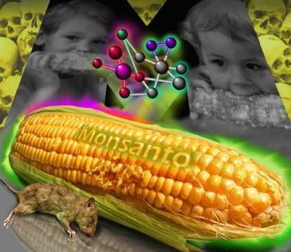 Kooperativyi-SSHA-protiv-Monsanto