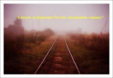 Fermeryi-v-Rossii-nuzhdayutsya-v-gspodderzhke