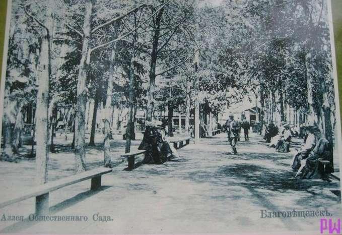 Aleya-obshhestvennogo-sada-v-Blagoveshhenske.