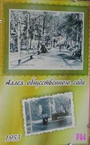 Aleya-obshhestvennogo-sada-v-Blagoveshhensket-1953