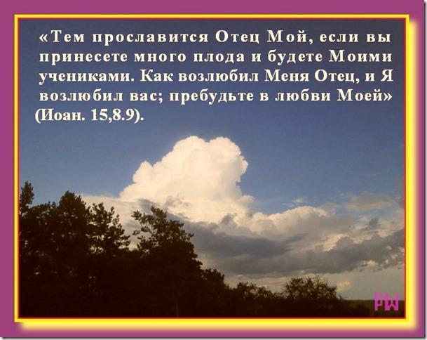 Доброе семя христианина на сайте pravo-wmeste.ru