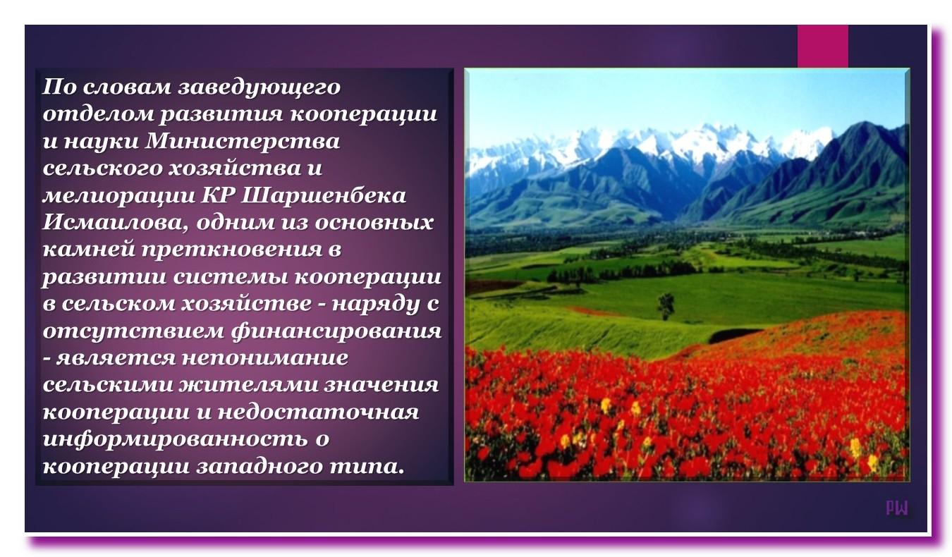 Кооперативы независимого Кыргызстана