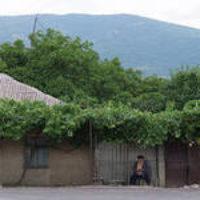 Грузинские фермеры в кооперативы не спешат