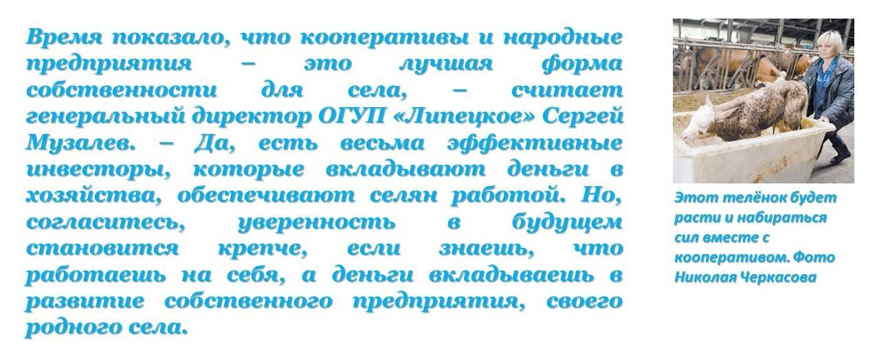Кооперативы - это лучшая форма собственности для села Измалково
