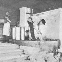 Как вологодские кооперативы и артели организовали маслодельные заводы