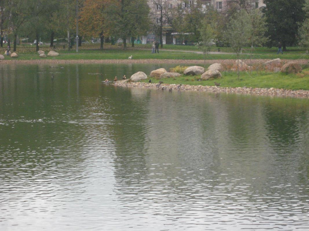Огари в Москве