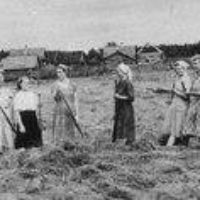 Становление советской потребительской кооперации в сельском хозяйстве Северного Края