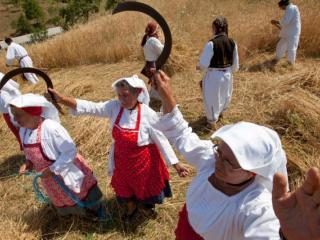 кооперативы украинскому селу