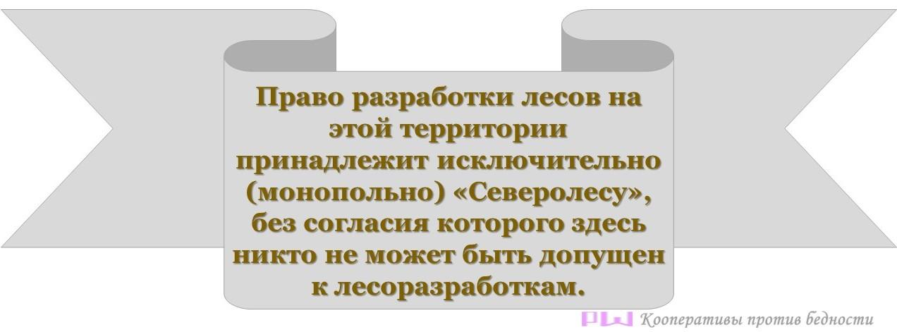 Лесозготовки в Северном крае