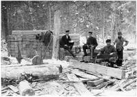 Крестьяне-лесорубы Северного края