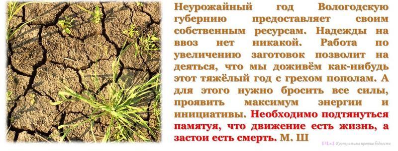 Неурожайный год предоставит Вологодской губернии