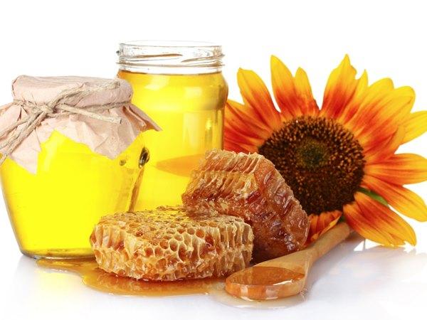 Пчеловодство как интелектуальная наука