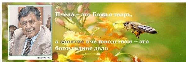 Пчела это Божье создание_cr