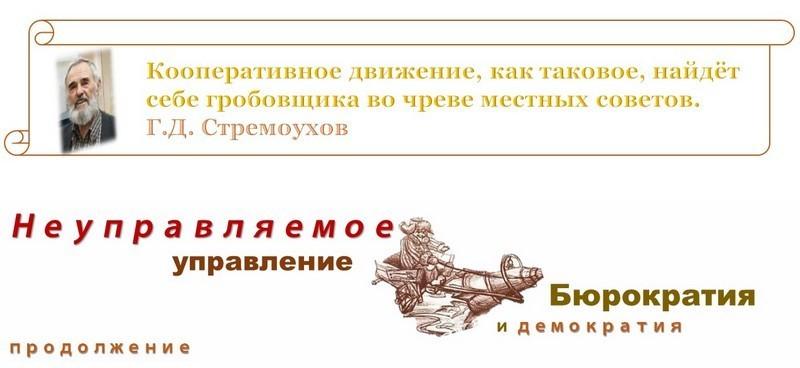 Г. Д. Стремоухов. Неуправлямое управление Бюрократия и демократия