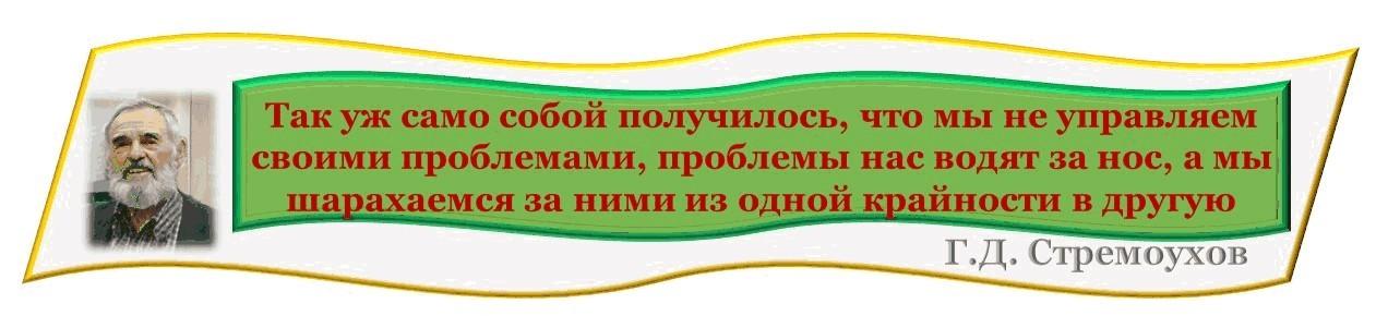 Г. Д. Стремоухов. Неуправлямое управление - о проблемах++