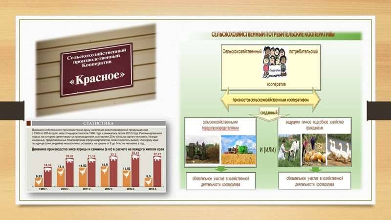 selskohozyaystvennyie-potrebitelskie-kooperativyi-v-krasnoyarske