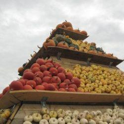 Новости сельскохозяйственной кооперации