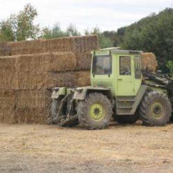 Выгоды объединения сельхозпроизводителей в кооперативы