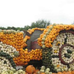 Кооперативы как средство возрождения совнархозов в России