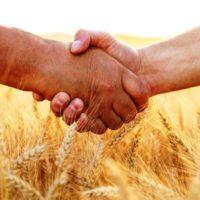 Развитие сельскохозяйственных кооперативов в Татарстане