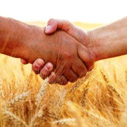 Опыт развития кооперативов в Татарстане для Башкортостана